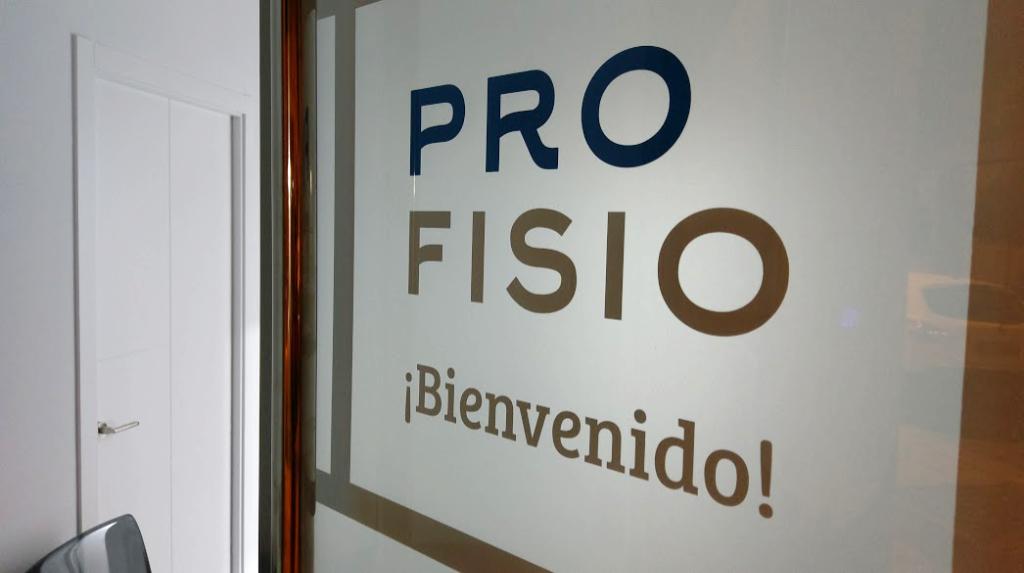Imagen principal de Pro-Fisio